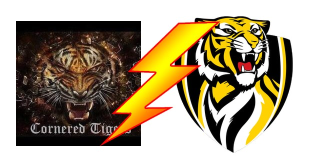 Cornered Tigers  vs Lahore Tigers